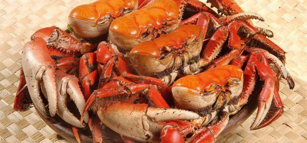 Quatro locais para comer caranguejo fora da praia